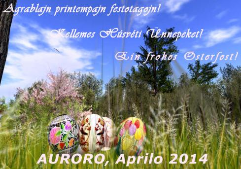 Pasko 14 Auroro